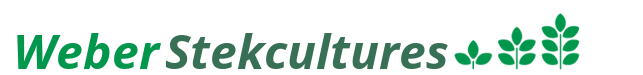 Weber Stekcultures